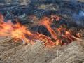 Житель Сумской области сжигал сухую траву и погиб