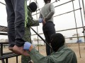 В Иране двух мужчин повесили за коррупцию