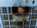 В Кыргызстане более тысячи заключенных в знак протеста зашили себе рты