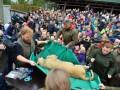 В датском зоопарке труп льва вскрыли на глазах у детей