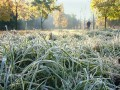 В Украине 17-19 сентября ожидаются первые заморозки