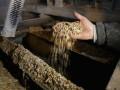 Украинский завод изобрел кормовой концентрат с рекордным содержанием белка