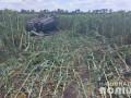 В Харьковской области авто вылетело в подсолнухи, водитель погиб