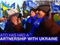НАТО сделало видео про Украину с танцами в поддержку регионалов