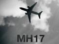Порошенко прокомментировал выводы следствия по MH17