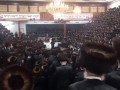 Семь тысяч хасидов собрались на свадьбу в карантин