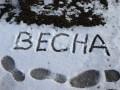 Сегодня в Украине местами снег, дождь и ветер - Гидрометцентр