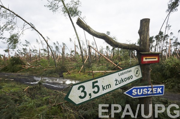 Ураган буквально уничтожил лес