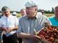 Оппозиционер предлагает объявить Жириновского персоной нон грата