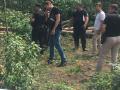 Застройщик под прикрытием титушек вырезал часть Гостомельского леса