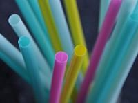 В Калифорнии ограничили использование пластиковых соломинок