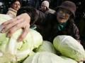 Цены на капусту в Украине выросли до максимумов за последние несколько лет