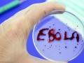 В США умер врач, заразившийся Эболой в Сьерра-Леоне