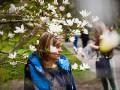 Весна в столице: в Киеве расцвели магнолии