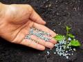 ОККО начнет продавать минеральные удобрения