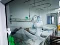 В Китае мобилизовали 25 тысяч медиков для борьбы с COVID-19