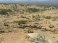В США разбился истребитель Нацгвардии