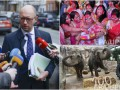 День в фото: Яценюк на допросе,  индийский ритуал и столетие слонов