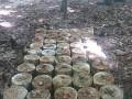 Киевлян просят не ходить на Лысую гору: Там нашли множество снарядов