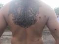 Рейдеры устроили стрельбу на харьковском агропредприятии: 4 раненых