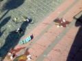 На Закарпатье Порошенко чуть не забросали яйцами