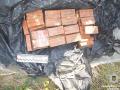 Под Днепром у жителя обнаружили более 13 кг тротила