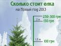 Новый год на игле: стали известны цены на елки (ИНФОГРАФИКА)