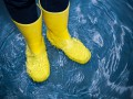 В Украину пришли весенние дожди