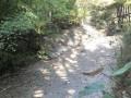 В Крыму пересохла река, питавшая водохранилище