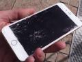 Видео дня:  тренировки «партизан» и краш-тест iPhone 6