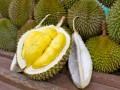 В Австралии студентов эвакуировали из-за гнилого фрукта