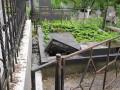В Ужгороде разрушили плиты на кладбище