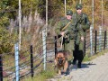 Военные РФ укрепляют пункты пропуска на границе с Донбассом - разведка