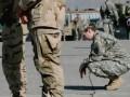 Новый секс-скандал в военных кругах США: Инструкторы базы ВВС подозреваются в сексуальных домогательствах и изнасилованиях