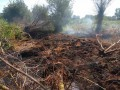 Под Киевом целый день горел торфяник