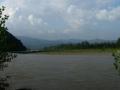 Иностранец с детьми чуть не утонул на Закарпатье: спасло дерево