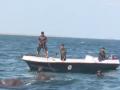 На Шри-Ланке военные спасли из моря двух слонов