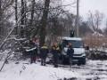 На Киевщине бобры оставили без света целое село