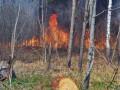 В ГСЧС рассказали о ситуации с пожарами в Чернобыльской зоне