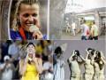 День в фото: Олимпийцы в метро, Sia в Библосе и победа Свитолиной