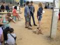 Число беженцев с Донбасса превысило миллион человек - ООН
