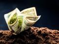 В Нацбанке объяснили скачок доллара в Украине
