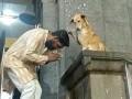 В Индии собака