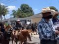 На акцию в пригороде Лос-Анджелеса прибыли ковбои на лошадях