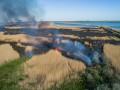 Нардепы предлагают штрафовать украинцев за сжигание травы и мусора