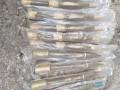 Около автодороги в Донецкой области нашли тайник с боеприпасами