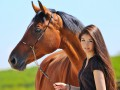 Скандал с кониной: Девять стран, активно поедающих лошадей