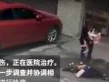 В Китае упавшая с высоты собака нокаутировала женщину