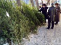 В Харькове активисты Азова отбирали елки у продавцов и отдавали прохожим