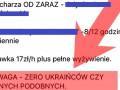 В Польше разместили вакансию с условием